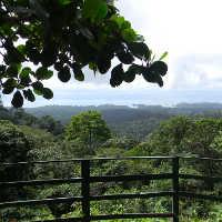 Natuurpark Brownsberg